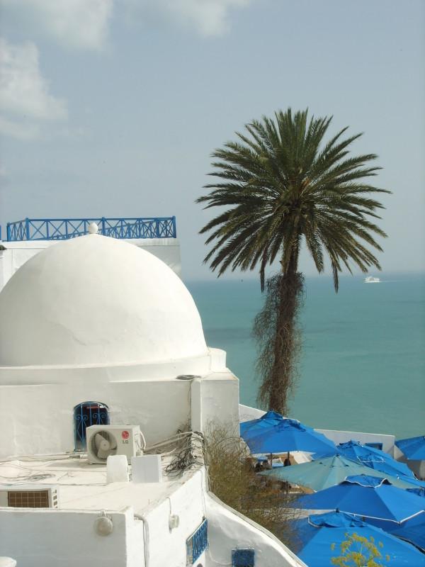 De Tunis à Sidi Bou Saïd