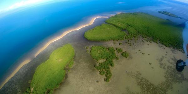 Entre mangrove et lagon, Voh, Nouvelle-Calédonie
