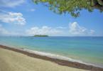 Immersion en Basse Terre, Guadeloupe