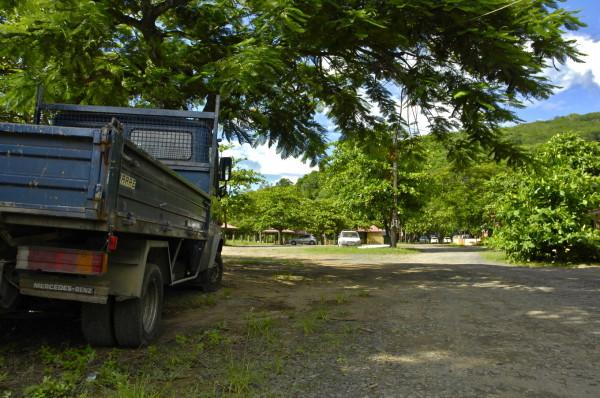 Sous les raisiniers de la plage Caraïbe, Deshaies, Guadeloupe