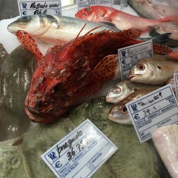 Etal de poissons, Sea Me, Lisbonne, Portugal