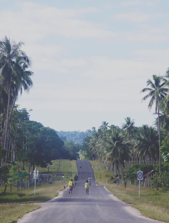 Tribu de Santo, Vanuatu
