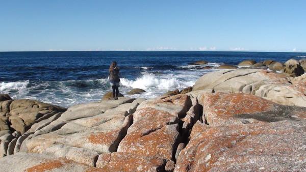 Carnet de voyage d'un roadtrip tasman : de Musselroe Point à Bay of Fire (3)