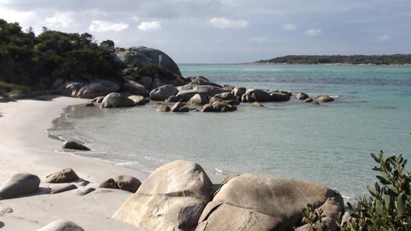 Carnet de voyage d'un roadtrip tasman : de St Helens à Dora Point (4)
