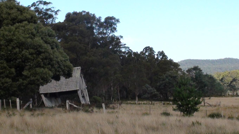 A l'orée de la forêt, Mathinna, Tasmanie