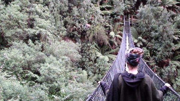 Carnet de voyage d'un roadtrip tasman : De Montezuma à Lake St Clair (7)