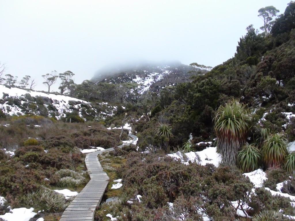 La Tasmanie à pied
