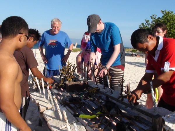 Planter du corail à Perama Island