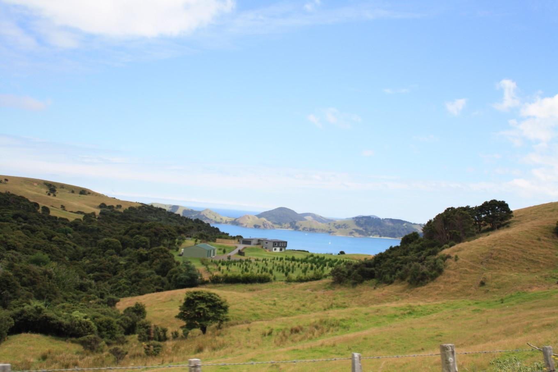 Coromandels - Nouvelle-Zélande