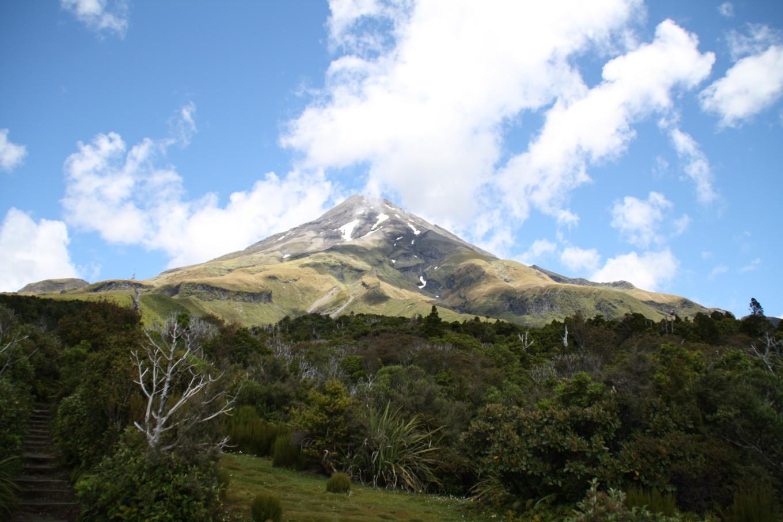 Eggmont - Nouvelle-Zélande