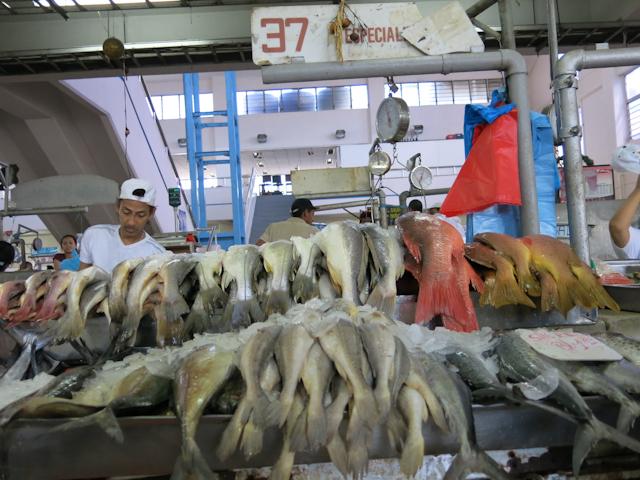 Le marché aux poissons de Panama City - Essayez le ceviche!