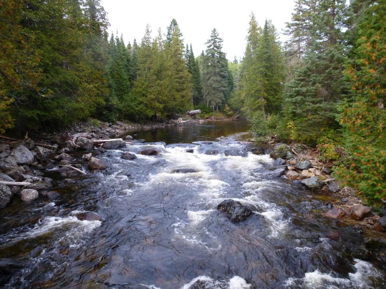 Mont Albert - Parc Naturel de Gaspésie, Québec