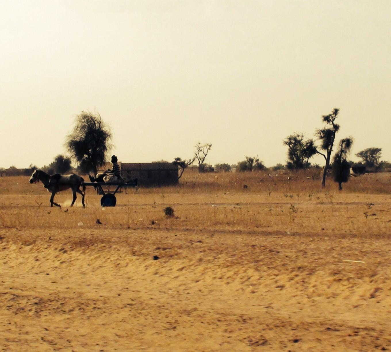 Sur la route de Mbacké, Sénégal