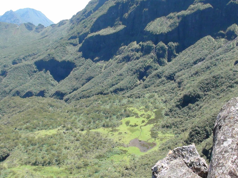 Mare du Plateau de Kerval, Réunion