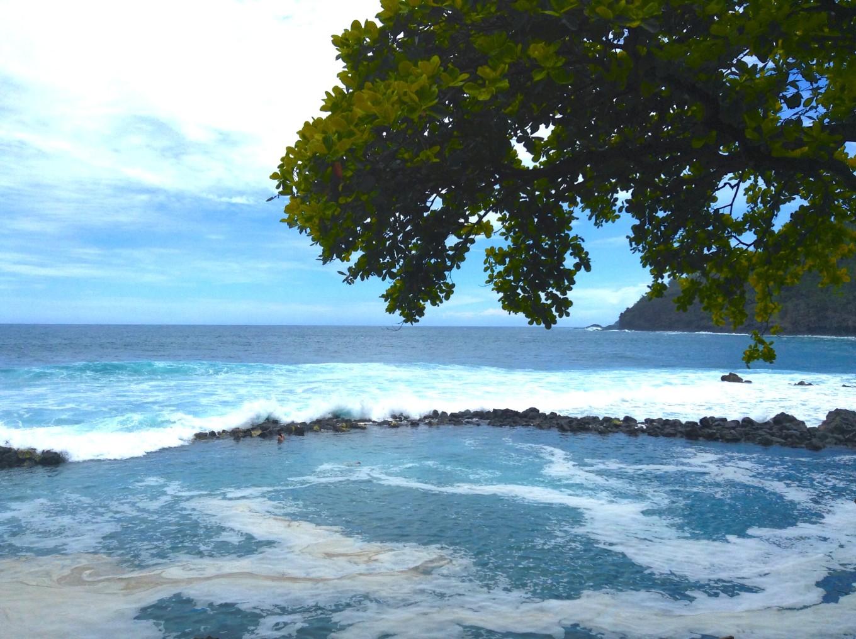 Bassin de Manapany, Réunion