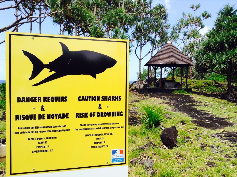 Cap Méchant, Réunion