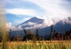 Sur la route du Rinjani, Lombok, Indonésie