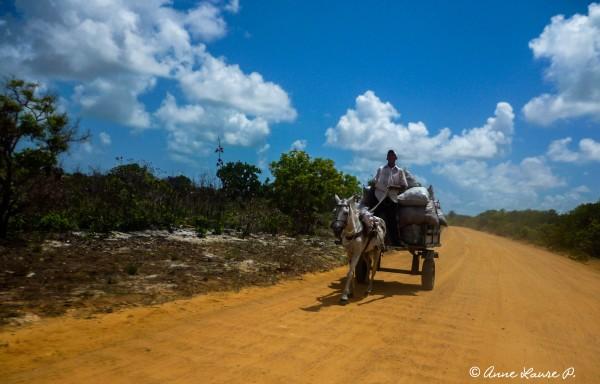 En chemin pour rejoindre Fortaleza, Ceara, Brésil