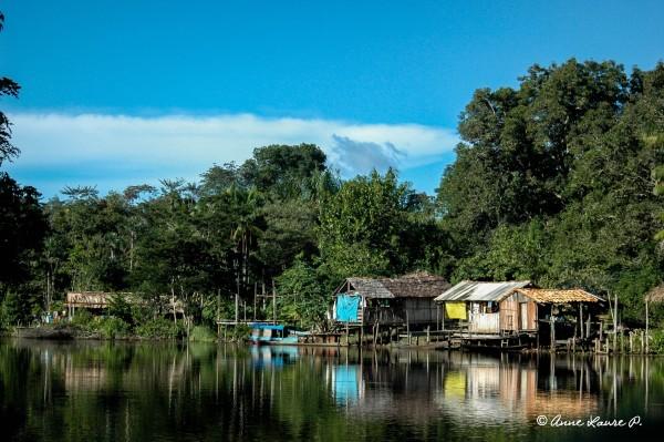 Habitation de ribeirinhos le long du fleuve Pracupi, Para, Brésil