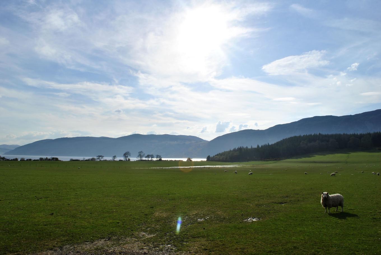 Arrivée sur le Loch Ness - Ecosse