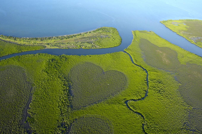Coeur de Voh, Nouvelle-Calédonie