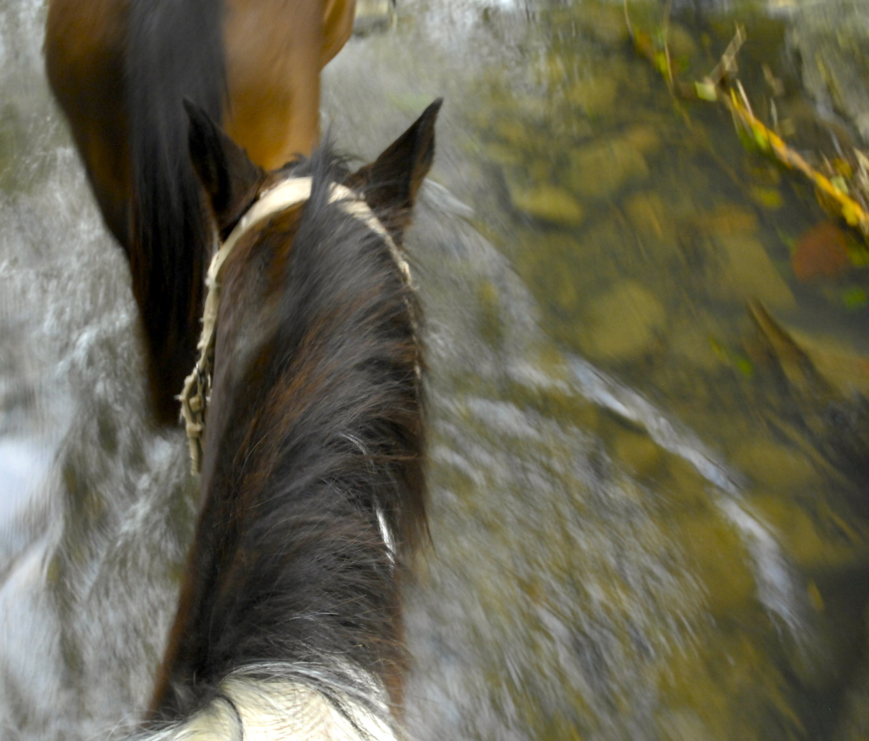 A cheval, Sarraméa, Nouvelle-Calédonie