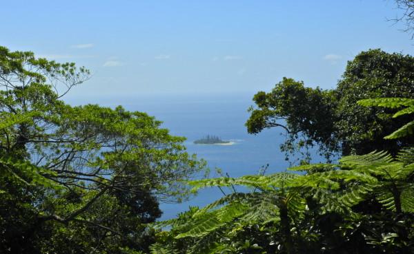 Koyaboa, Poindimié, Nouvelle-Calédonie