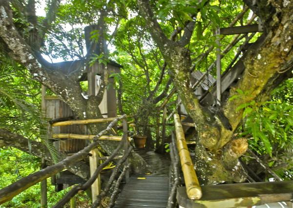 Passerelles du Château Mango, Tendacayou, Guadeloupe