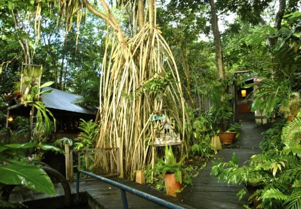 Spa Tendacayou, Deshaies, Guadeloupe