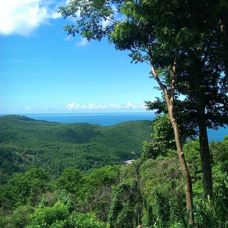 Pointe Noire, Guadeloupe