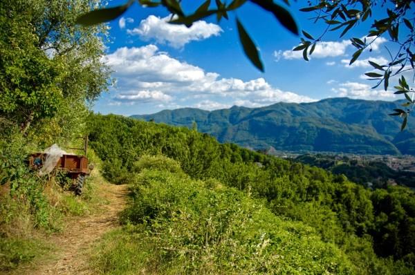 Sur le sentier, Coreglia, Italie