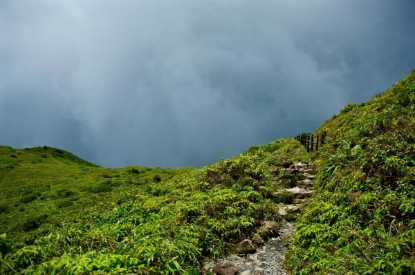 Sur le sentier de la Soufrière, Guadeloupe