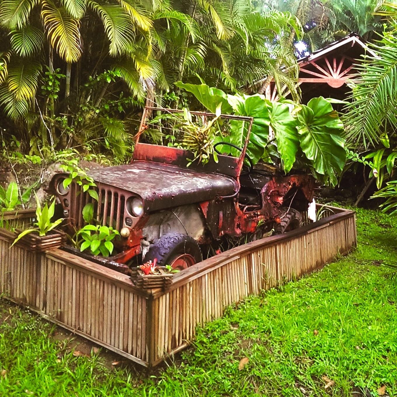 Dans les jardins du Tendacayou, Deshaies, Basse-Terre