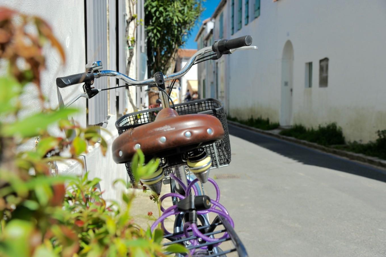 L'île de Ré à vélo, France