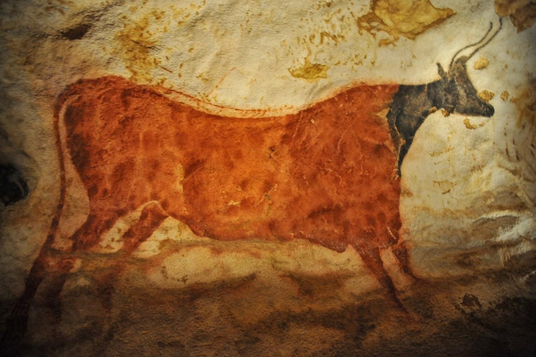 Portrait de la vache rouge à tête noire, Lascaux, Périgord