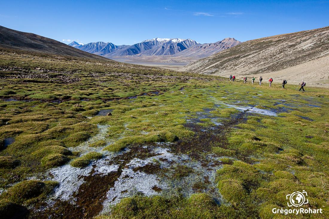 Phirtse chu vallée sur les plateaux du changtang Inde