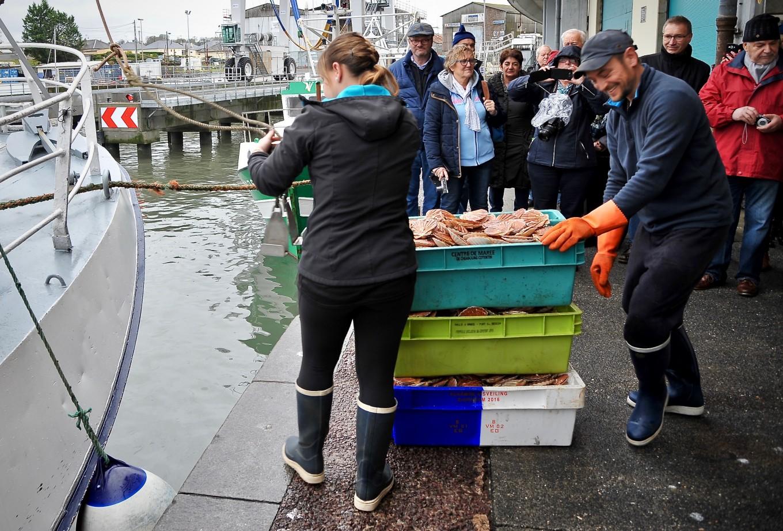Vider les cales, retour de pêche à Port-en-Bessin