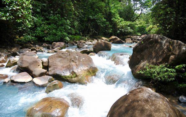 Pleines eaux, Parc Tenorio