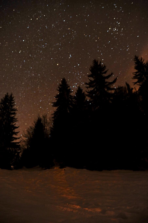 Nuit étoilée sur Plaine Joux, Alpes du Léman