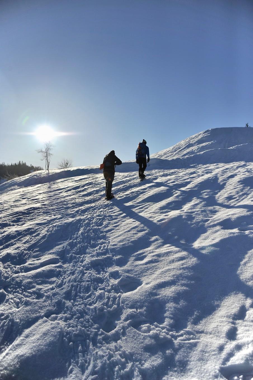 Survie en hiver, Alpes du Léman