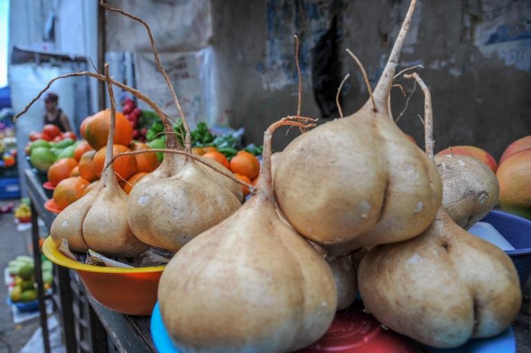 gros-plan-legumes-du-marche-mexique-merida