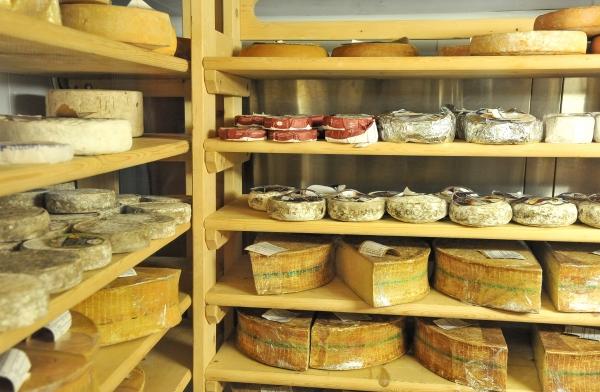Dégustation de fromages avec Food Trip
